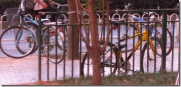 街旁停了很多自行车