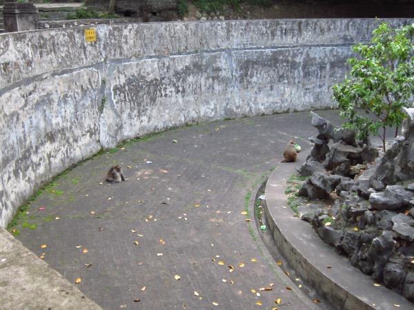 南宁市人民公园