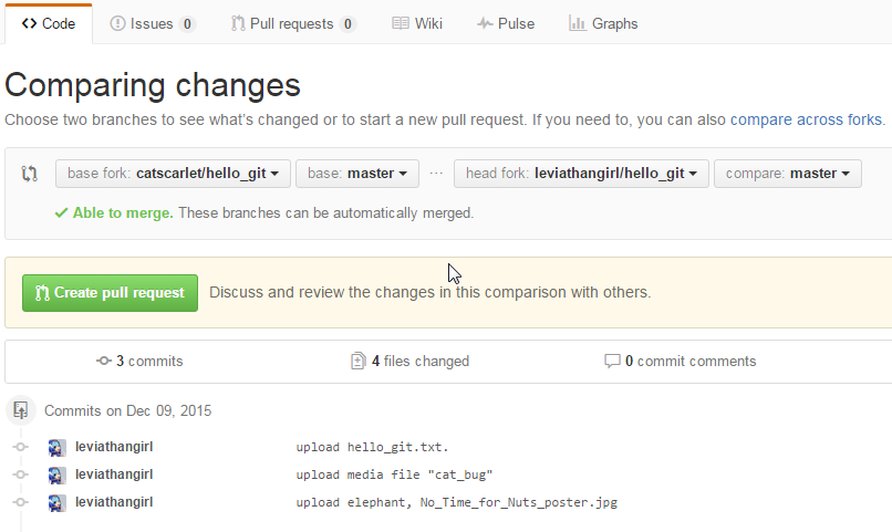 github_page_pull_request.png